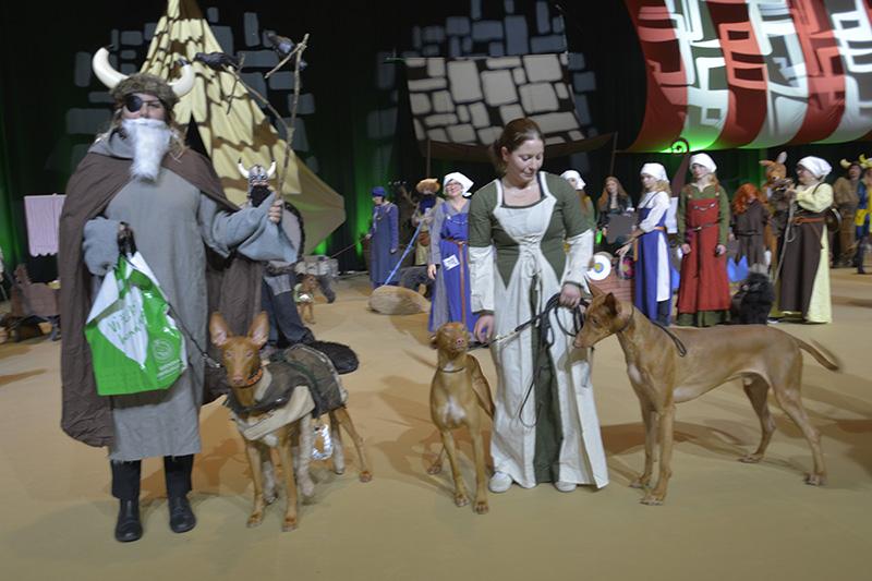 Rasparad 4:e pris Faraohund