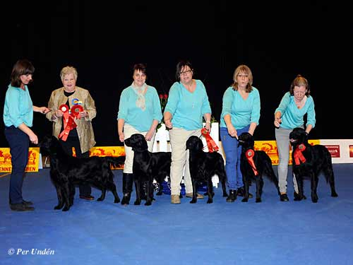 Best Breeding Group, 28 March 2015, Saturday - Winners of the International Dog Show Malmö (Sweden) 28-29 March 2015