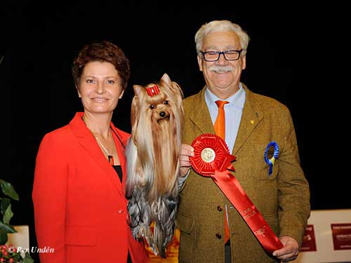 FCI group III - Winners of the International Dog Show Malmö (Sweden) 28-29 March 2015