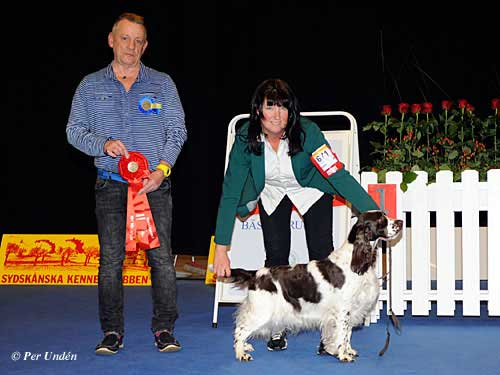 FCI group VIII - Winners of the International Dog Show Malmö (Sweden) 28-29 March 2015