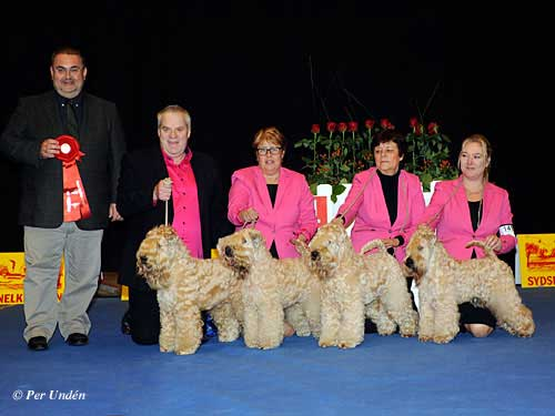 Best Progeny, 28 March 2015, Saturday - Winners of the International Dog Show Malmö (Sweden) 28-29 March 2015