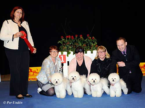 Best Progeny, 29 March 2015, Sunday - Winners of the International Dog Show Malmö (Sweden) 28-29 March 2015
