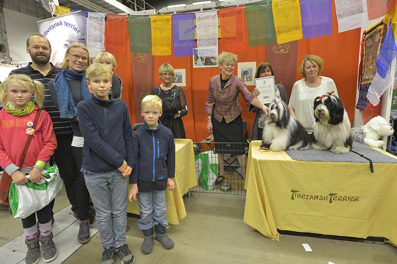 Rasklubbsmonter Hederspris Tibetansk terrier