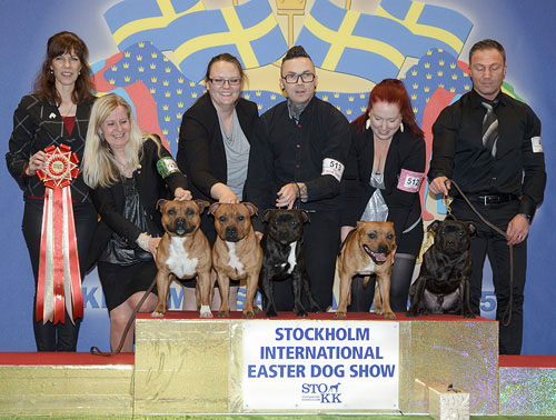 Best Progeny (Friday, 3 April 2015) - Winners of the Stockholm International Easter Dog Show, 3-5 April 2015