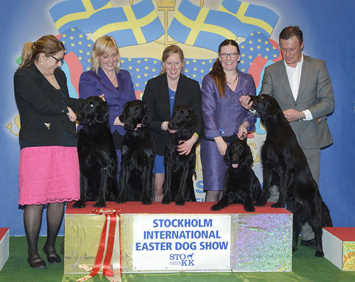 Best Progeny (Saturday, 4 April 2015) - Winners of the Stockholm International Easter Dog Show, 3-5 April 2015