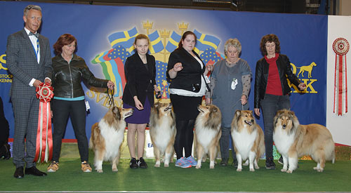 Best Progeny (Sunday, 5 April 2015) - Winners of the Stockholm International Easter Dog Show, 3-5 April 2015