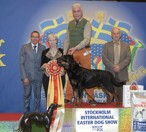 FCI group II - Winners of the Stockholm International Easter Dog Show, 3-5 April 2015
