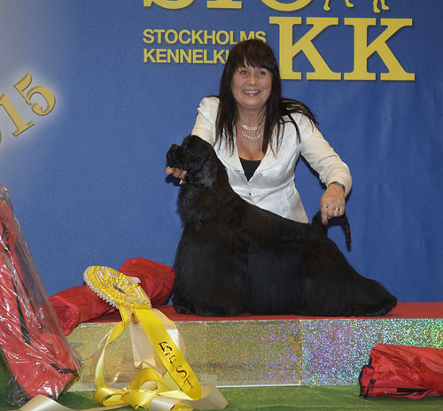 FCI group VIII - Winners of the Stockholm International Easter Dog Show, 3-5 April 2015