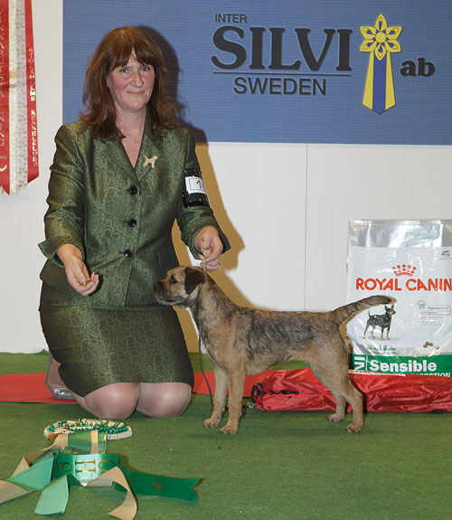 FCI group III - Winners of the Stockholm International Easter Dog Show, 3-5 April 2015