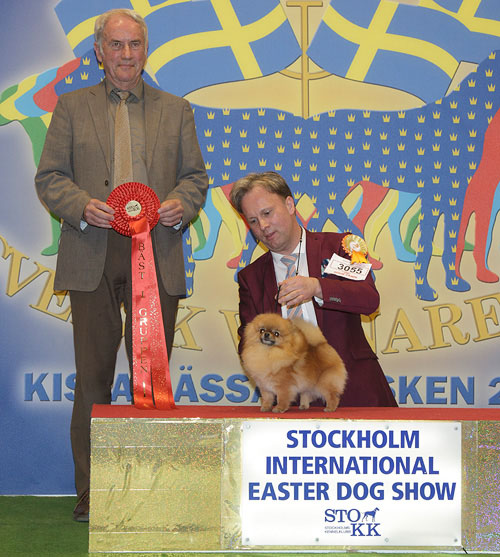 FCI group V - Winners of the Stockholm International Easter Dog Show, 3-5 April 2015