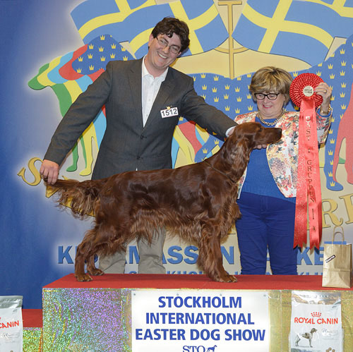 FCI group VII - Winners of the Stockholm International Easter Dog Show, 3-5 April 2015