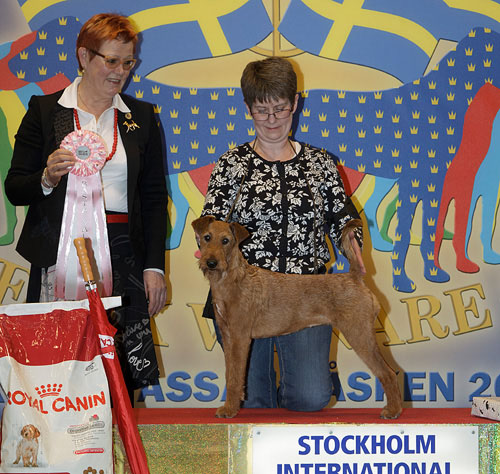 Best Puppy (Friday, 3 April 2015) - Winners of the Stockholm International Easter Dog Show, 3-5 April 2015
