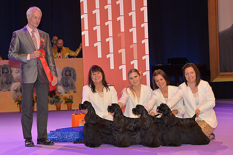 Best Breeders' Group (Sunday, 13 December 2015) - Winners of the International Dog Show «Hundmässa 2015» (Stockholm, Sweden), 12-13 December 2015 (BIS photo)