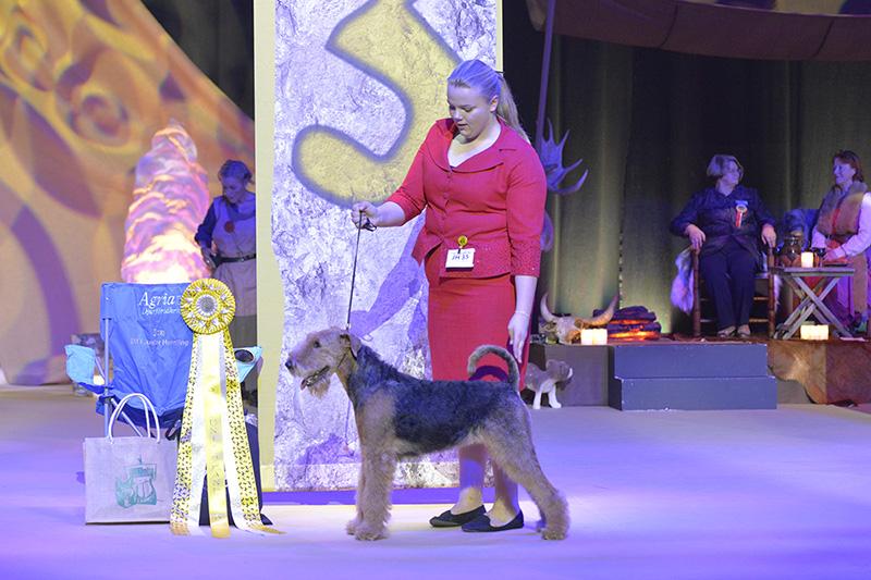 SM junior handling 3:a pris Sophia Bartholomew