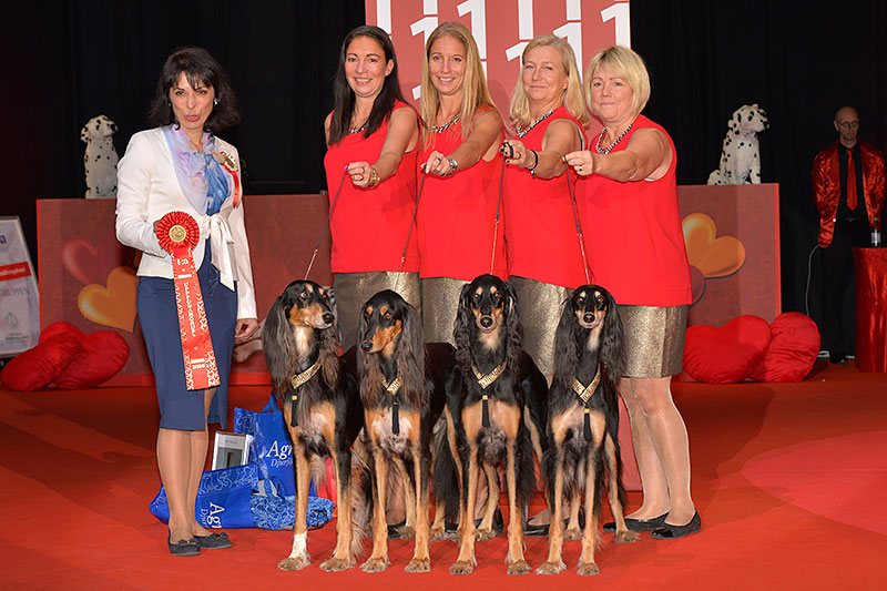 Best Breeders' Group (Sunday, 4 December 2016) - BIS IDS «Swedish Winner 2016» (Stockholm), 3-4 December 2016