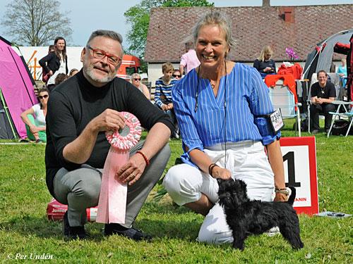 Best Puppy (Sunday, 22 May 2016) - BIS CACIB Hässleholm (Sweden), 21- 22 May 2016 (photo)