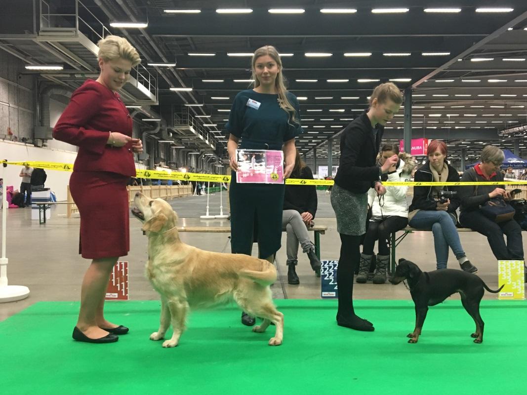 Junior handling vinnare 14-17 år Mimmi Roslin, Junior handling 10-13 år 1:a-pris Ia Cannerheim <br/>Foto Märta Brandts